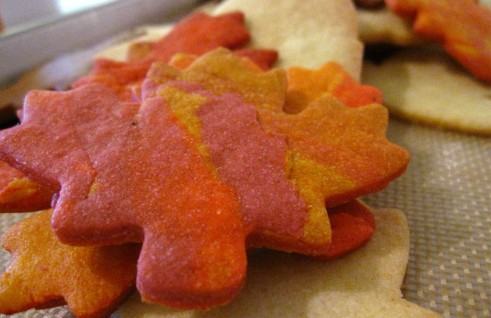Multi Coloured Cookie