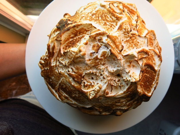 Baked Alaska Top view