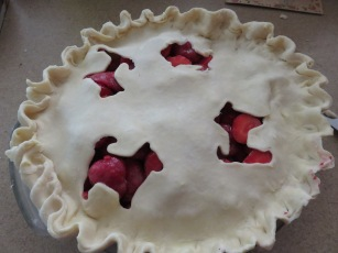 Pie with Shiba Cut Outs